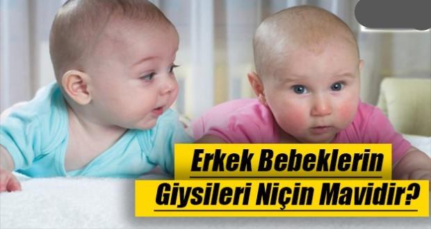 Erkek bebeklerin giysileri niçin mavidir?